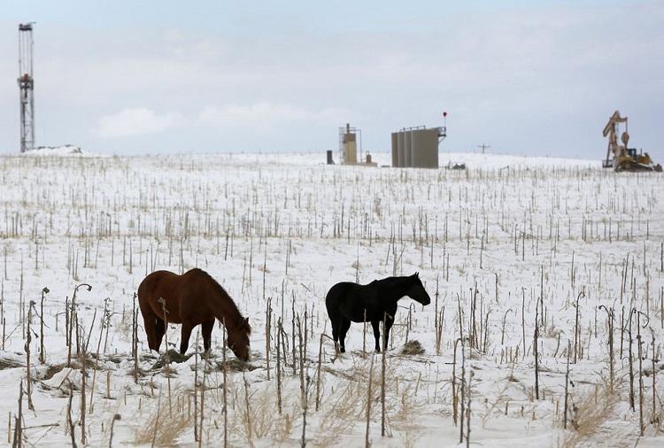 Северная Дакота — преимущественно сельскохозяйственный штат